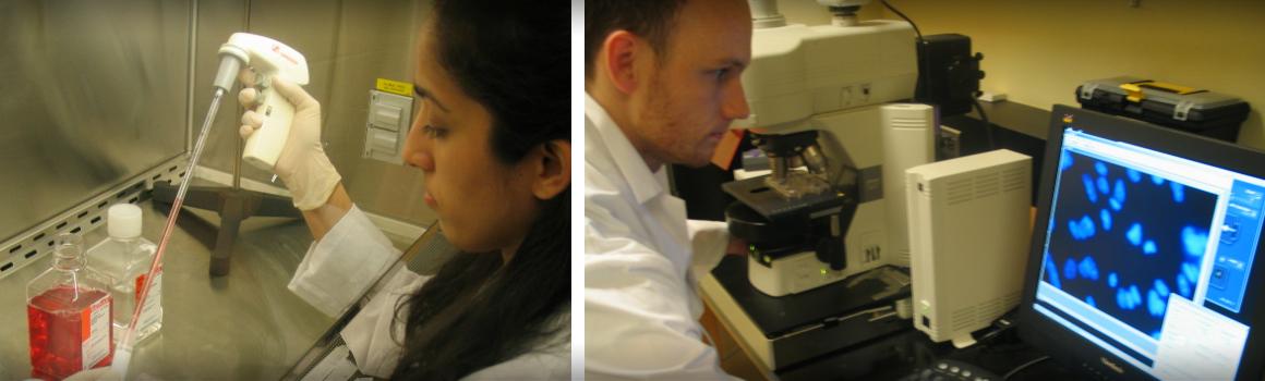 Lab Members Image 2